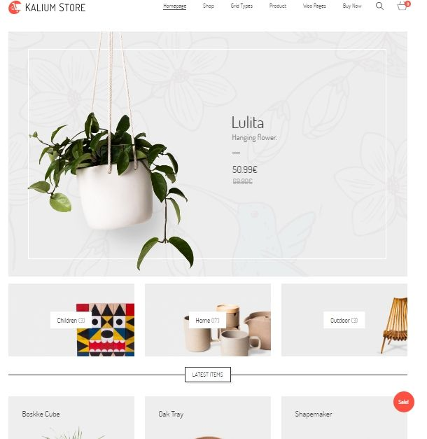 PLANTILLA ecommerce wordpress